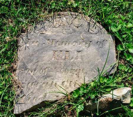 CLLINE, ELI - Richland County, Ohio | ELI CLLINE - Ohio Gravestone Photos