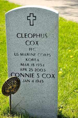 COX, CLEOPHUS - Richland County, Ohio | CLEOPHUS COX - Ohio Gravestone Photos
