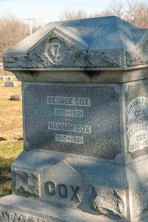 COX, GEORGE - Richland County, Ohio | GEORGE COX - Ohio Gravestone Photos