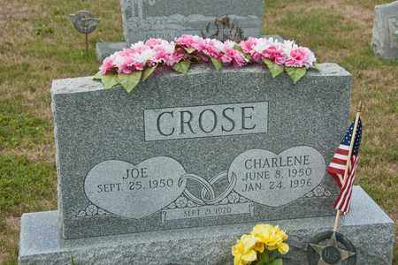 CROSE, CHARLENE - Richland County, Ohio | CHARLENE CROSE - Ohio Gravestone Photos