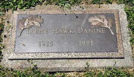 HAWK DANINE, IRENE - Richland County, Ohio | IRENE HAWK DANINE - Ohio Gravestone Photos