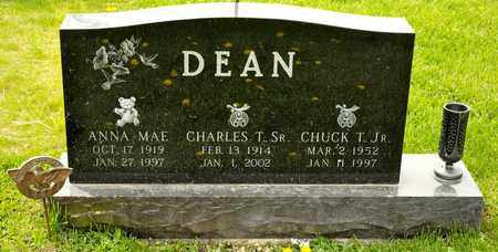 DEAN JR, CHUCK T - Richland County, Ohio | CHUCK T DEAN JR - Ohio Gravestone Photos