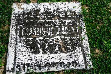 DELANCEY, FRANCIS - Richland County, Ohio | FRANCIS DELANCEY - Ohio Gravestone Photos