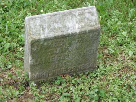 DICK, JAMES NORRIS - Richland County, Ohio | JAMES NORRIS DICK - Ohio Gravestone Photos