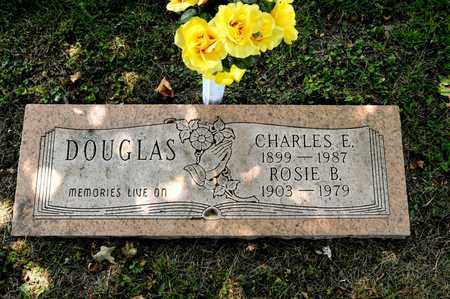 DOUGLAS, ROSIE B - Richland County, Ohio | ROSIE B DOUGLAS - Ohio Gravestone Photos