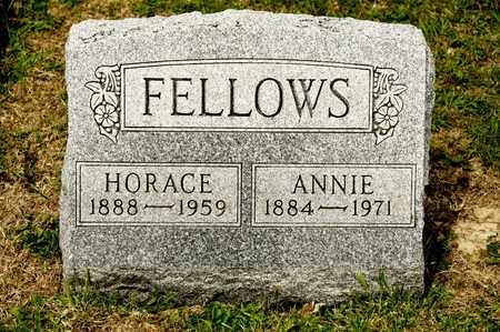FELLOWS, ANNIE - Richland County, Ohio | ANNIE FELLOWS - Ohio Gravestone Photos