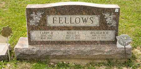 FELLOWS, LARRY O - Richland County, Ohio | LARRY O FELLOWS - Ohio Gravestone Photos