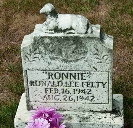FELTY, RONALD LEE - Richland County, Ohio | RONALD LEE FELTY - Ohio Gravestone Photos