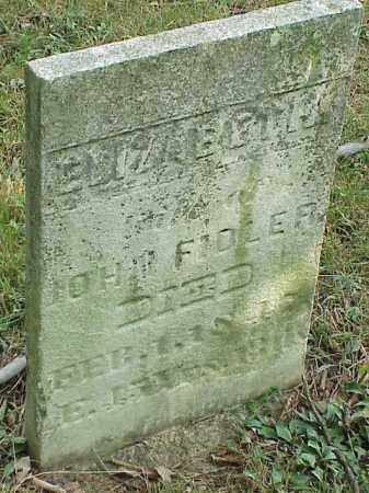FIDLER, ELIZABETH - Richland County, Ohio   ELIZABETH FIDLER - Ohio Gravestone Photos