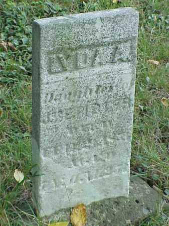 FIDLER, LYDIA A. - Richland County, Ohio | LYDIA A. FIDLER - Ohio Gravestone Photos