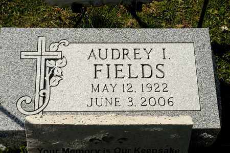 FIELDS, AUDREY I - Richland County, Ohio | AUDREY I FIELDS - Ohio Gravestone Photos