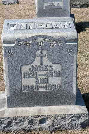 FINNEGAN, ANN - Richland County, Ohio | ANN FINNEGAN - Ohio Gravestone Photos