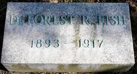 FISH, DEFOREST - Richland County, Ohio | DEFOREST FISH - Ohio Gravestone Photos