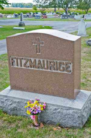 FITZMAURICE, JOHN - Richland County, Ohio | JOHN FITZMAURICE - Ohio Gravestone Photos