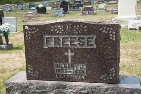 FREESE, HILBERT J - Richland County, Ohio | HILBERT J FREESE - Ohio Gravestone Photos