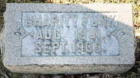 FUNK, CHARITY - Richland County, Ohio | CHARITY FUNK - Ohio Gravestone Photos