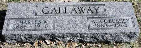 BUSHEY GALLAWAY, ALICE - Richland County, Ohio | ALICE BUSHEY GALLAWAY - Ohio Gravestone Photos