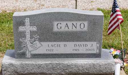 GANO, LACIE D - Richland County, Ohio | LACIE D GANO - Ohio Gravestone Photos