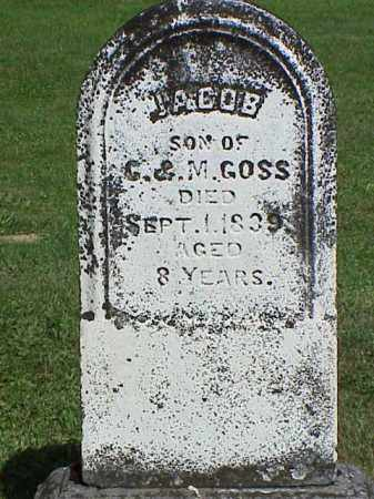 GOSS, JACOB - Richland County, Ohio | JACOB GOSS - Ohio Gravestone Photos