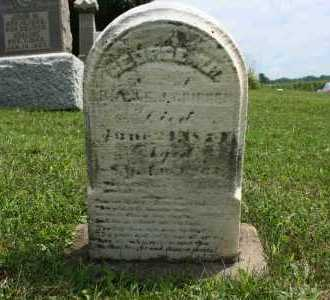 GRIBBEN, GEORGE WM - Richland County, Ohio | GEORGE WM GRIBBEN - Ohio Gravestone Photos
