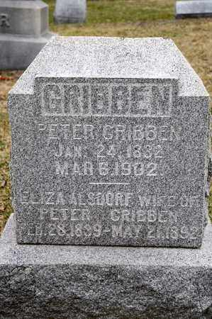 GRIBBEN, ELIZA - Richland County, Ohio | ELIZA GRIBBEN - Ohio Gravestone Photos