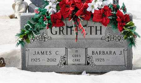 GRIFFETH, JAMES C - Richland County, Ohio | JAMES C GRIFFETH - Ohio Gravestone Photos