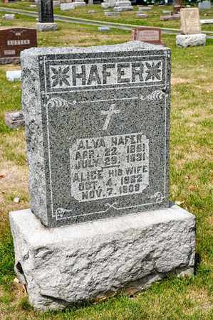 HAFER, ALICE - Richland County, Ohio | ALICE HAFER - Ohio Gravestone Photos