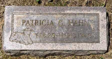 HAHN, PATRICIA G - Richland County, Ohio | PATRICIA G HAHN - Ohio Gravestone Photos