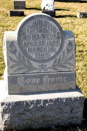 HAINES, CHARLOTTE - Richland County, Ohio | CHARLOTTE HAINES - Ohio Gravestone Photos