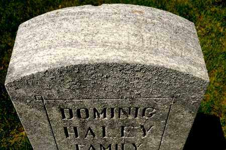 HALEY, DOMINIG - Richland County, Ohio | DOMINIG HALEY - Ohio Gravestone Photos
