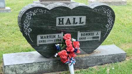 HALL, MARTIN L - Richland County, Ohio | MARTIN L HALL - Ohio Gravestone Photos