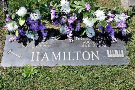 HAMILTON, STANLEY CARTER - Richland County, Ohio | STANLEY CARTER HAMILTON - Ohio Gravestone Photos