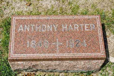 HARTER, ANTHONY - Richland County, Ohio | ANTHONY HARTER - Ohio Gravestone Photos