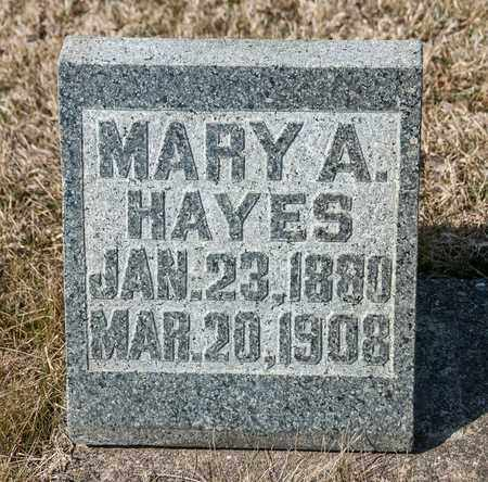 HAYES, MARY A - Richland County, Ohio | MARY A HAYES - Ohio Gravestone Photos