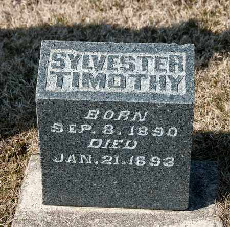 HAYES, SYLVESTER TIMOTHY - Richland County, Ohio | SYLVESTER TIMOTHY HAYES - Ohio Gravestone Photos