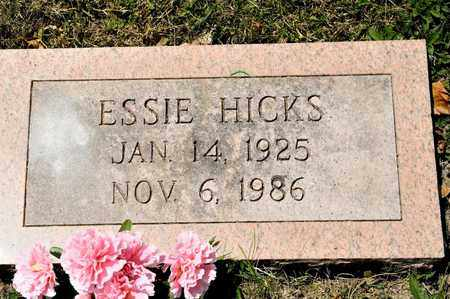 HICKS, ESSIE - Richland County, Ohio | ESSIE HICKS - Ohio Gravestone Photos