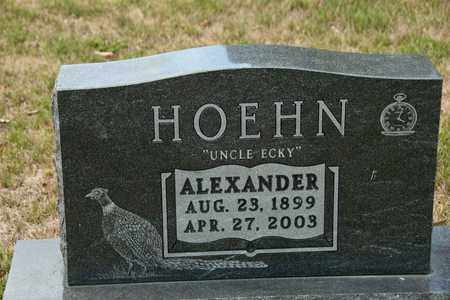 HOEHN, ALEXANDER - Richland County, Ohio | ALEXANDER HOEHN - Ohio Gravestone Photos