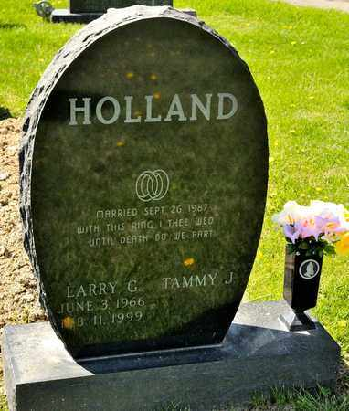 HOLLAND, LARRY G - Richland County, Ohio | LARRY G HOLLAND - Ohio Gravestone Photos
