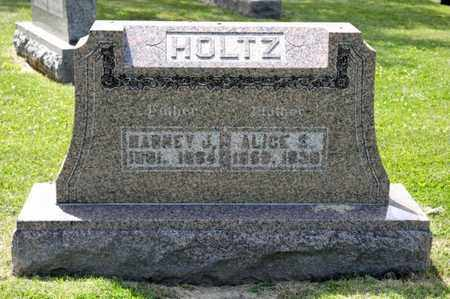 HOLTZ, ALICE S - Richland County, Ohio | ALICE S HOLTZ - Ohio Gravestone Photos