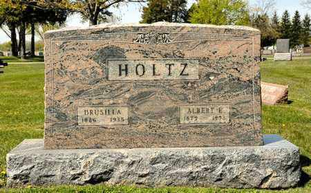 HOLTZ, ALBERT E - Richland County, Ohio | ALBERT E HOLTZ - Ohio Gravestone Photos