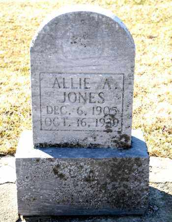 JONES, ALLIE A - Richland County, Ohio | ALLIE A JONES - Ohio Gravestone Photos