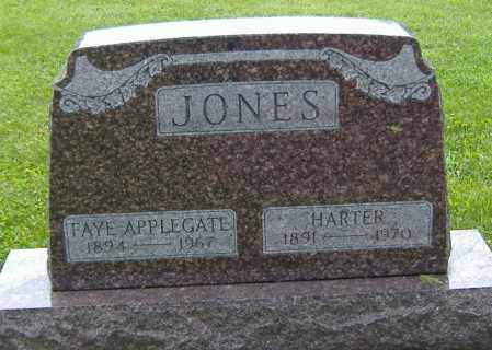 APPLEGATE JONES, FAYE - Richland County, Ohio | FAYE APPLEGATE JONES - Ohio Gravestone Photos