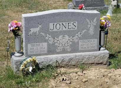 JONES, VIRGINIA A - Richland County, Ohio | VIRGINIA A JONES - Ohio Gravestone Photos