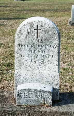 KARNEY, MARY - Richland County, Ohio | MARY KARNEY - Ohio Gravestone Photos
