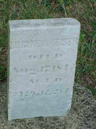 KEISER, LUGINDA - Richland County, Ohio | LUGINDA KEISER - Ohio Gravestone Photos