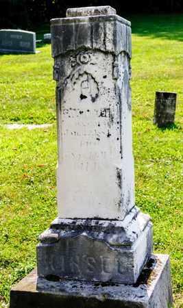 KINSEL, SARAH - Richland County, Ohio   SARAH KINSEL - Ohio Gravestone Photos