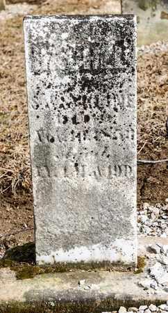 KLINE, RACHEL - Richland County, Ohio | RACHEL KLINE - Ohio Gravestone Photos