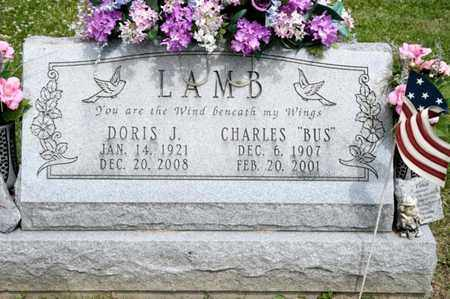 LAMB, DORIS J - Richland County, Ohio | DORIS J LAMB - Ohio Gravestone Photos