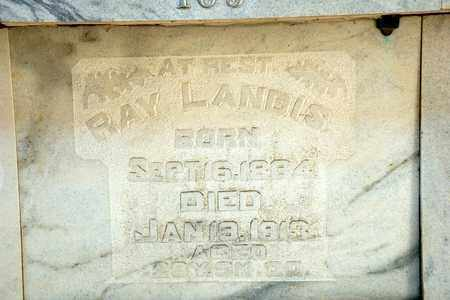 LANDIS, RAY - Richland County, Ohio | RAY LANDIS - Ohio Gravestone Photos