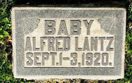 LANTZ, ALFRED - Richland County, Ohio | ALFRED LANTZ - Ohio Gravestone Photos